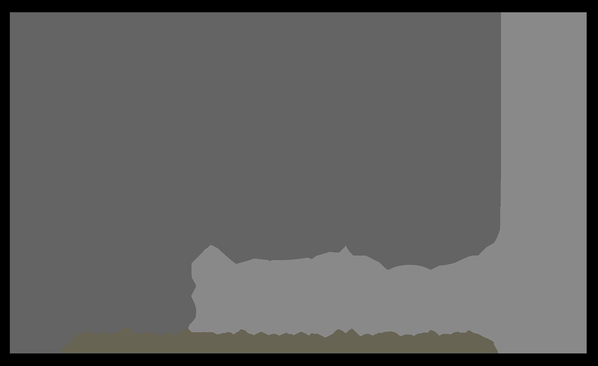 logo lens memories